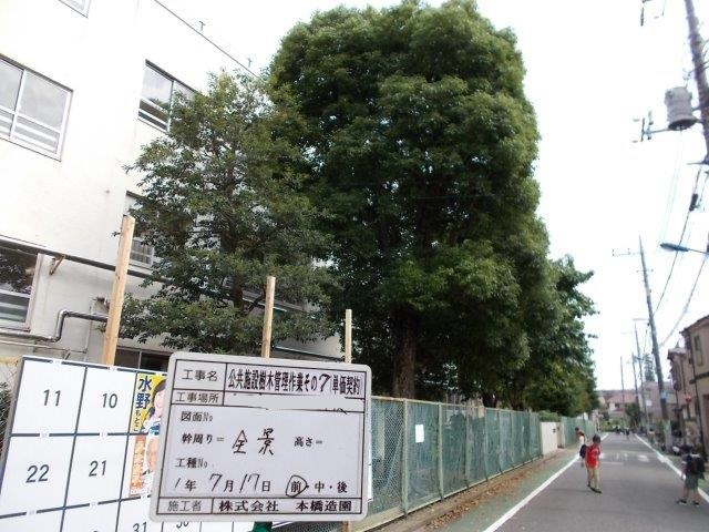 東京都 梅雨明け